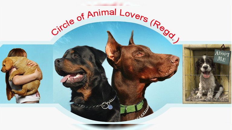 Circle Of Animal Lovers
