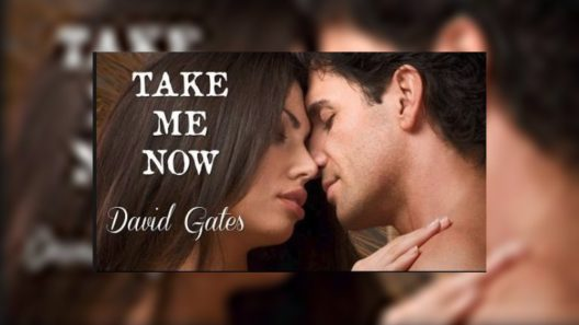 Take Me Now - David Gates