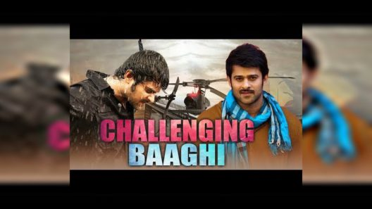 Challenging Baaghi