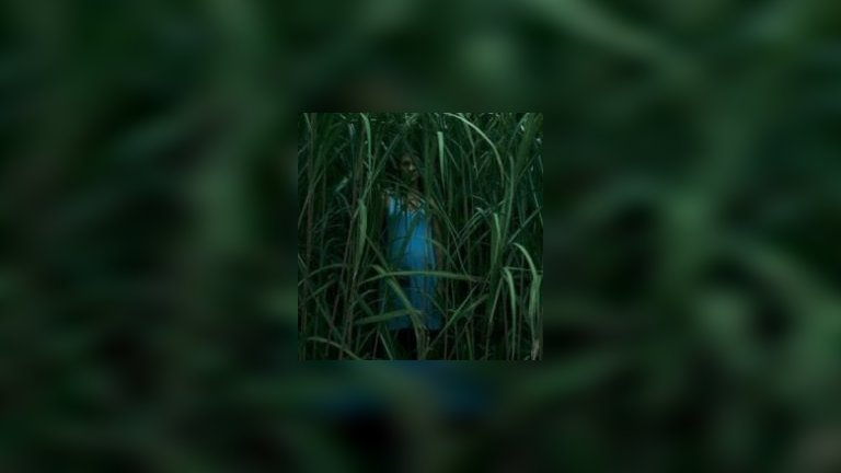 In the Tall Grass 2019