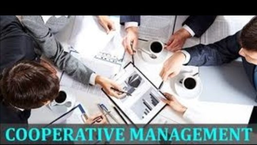 Bachelor of Co-operative Management